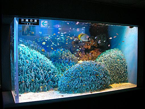 水族館63.jpg